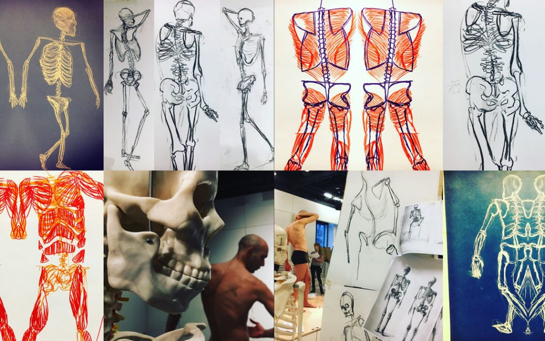 NEW! Creative Anatomy Workshop